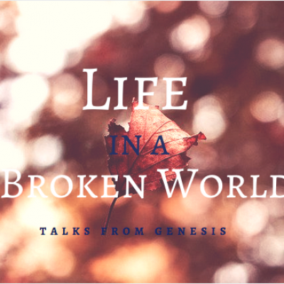Life in a Broken World 6: Genesis 8.1-9.29