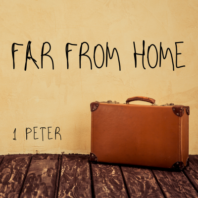 Far From Home (4) 1 Peter 2:4-10