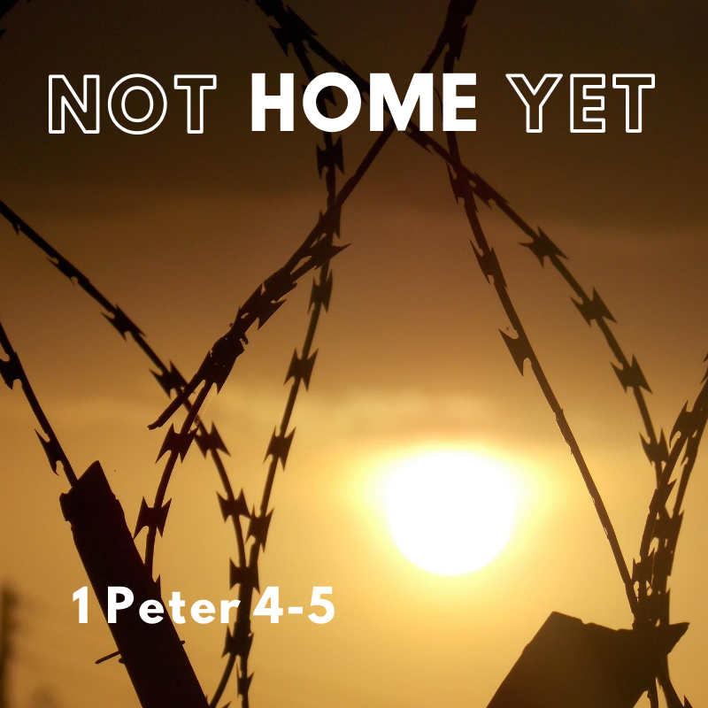 Not Home Yet (3) 1 Peter 5:1-14